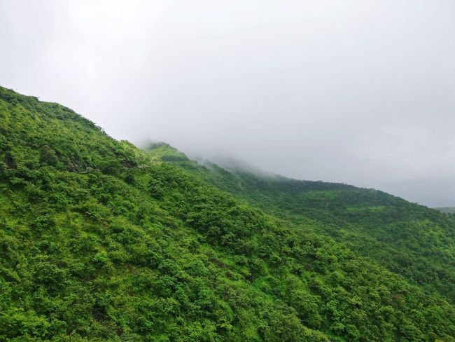 Fog Rain Weather Hill Landscape Nature Wet Rural Scene Outdoors Beauty In Nature No People Cloud - Sky Water Field Morning Mountain Range Scenics Beauty In Nature