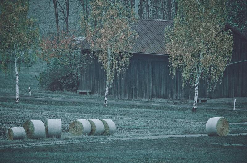 Row of hay bales on field
