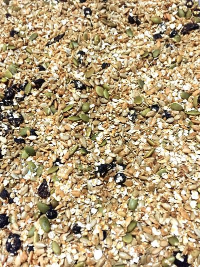 Home Baked Homemade Granola Abundance Backgrounds Full Frame Healthy Eating Food And Drink Nature Large Group Of Objects No People Freshness Food Beauty In Nature Close-up Day White Background Outdoors