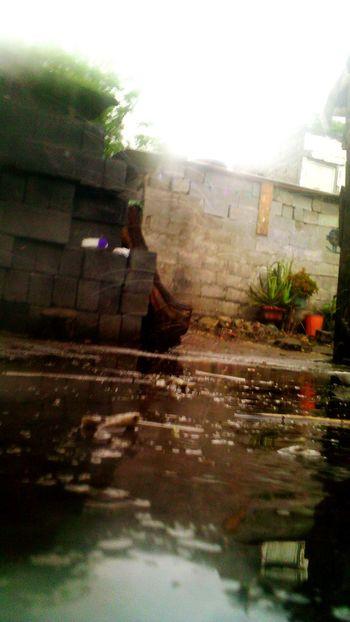 Rain Rainy Day Rainy Afternoon.