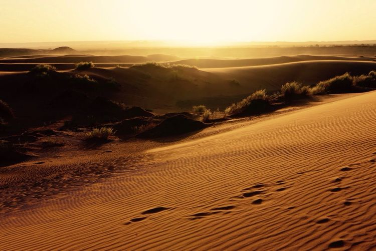 There's a light. Travel Traveling Sun Sunrise Life Shadows Shadow Desert Nature Sky Sunshine Lonely Lonley Planet On The Road Travelling Road Hello World Things I Like Enjoying Life Travel Destinations Cross The Desert Africa Light Morning Clouds And Sky