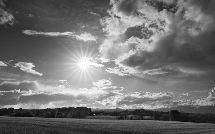 Undulating Fields - not bad for walking the dog, testing the pentax 15-30mm f/2.8. Yay for starburst lens-flare too. Beauty In Nature Black And White Blackandwhite Cloud Cloud - Sky Field Idyllic Lens Flare Light Light And Shadow Nature PENTAX K-1 Perthshire Scotland Sky Sky And Clouds Starburst Sun Sunlight Tranquil Scene Tranquility The Great Outdoors - 2017 EyeEm Awards