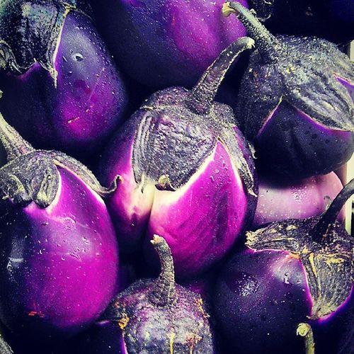 Halucigenic Aubergines Eggplants Sicily purple