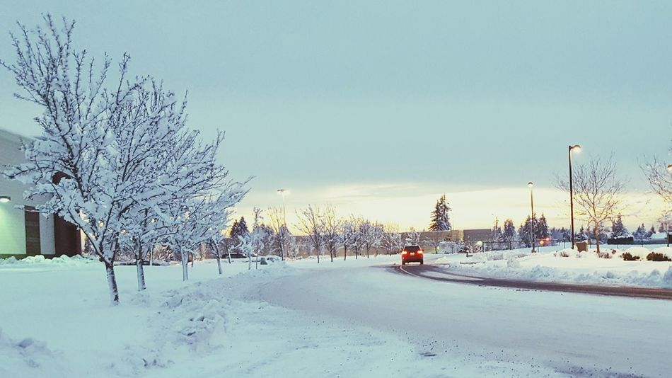 Snow Ice Winter Snow Sunset Snow Covered Snowy Snowy Sunset Snowy Landscape Wintertime Winter Wonderland Winterscapes Winter Trees Snow Covered Trees Snowscape White Winter Tail Light Blanket Of Snow Snow Covered Road Snow Covered Streets EyEm New Here Wallpaper Wallpapers Wallpaper Background Wallpaperstockphotos Vancouver
