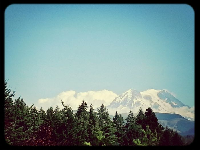 A view of Mnt Rainer from earlier today. KimberlyJTilley
