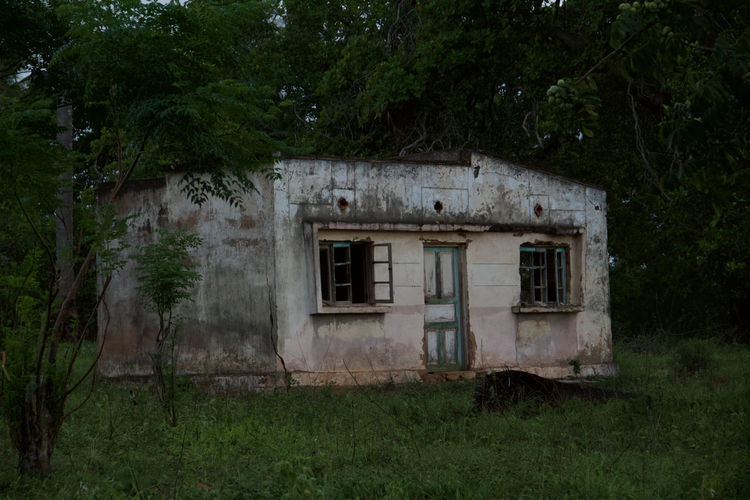 Old abandoned house on field against trees