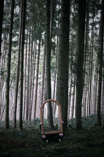 Person holding mirror against trees in forest