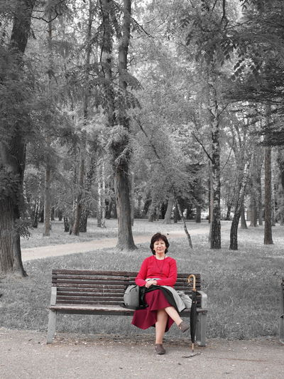 woman Slovakia Human Tree Full Length Sitting Red Relaxation Park Bench Bench Promenade Park
