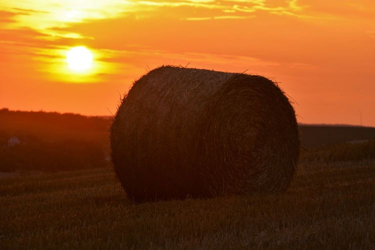 Agriculture Atmospheric Mood Bale  Day Dry Farm Field Grass Grassy Landscape Light Majestic Meadow Rural Scene Tranquility