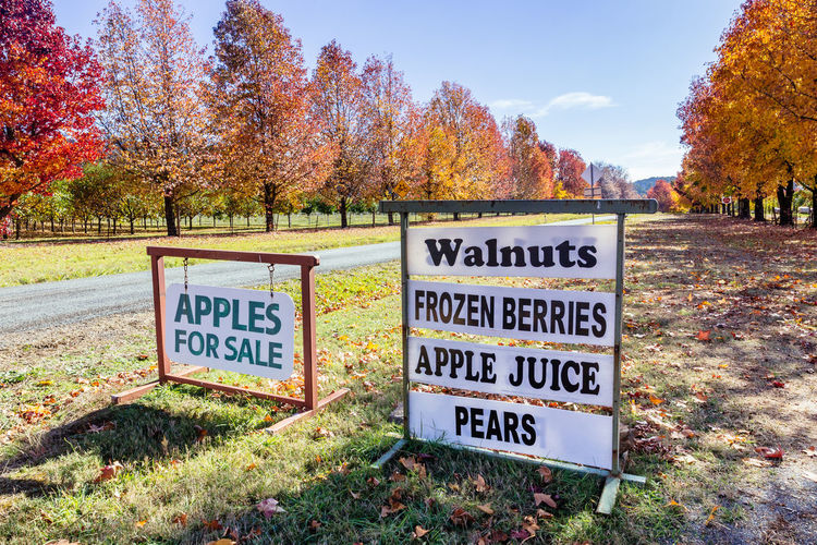 Stanley, Victoria Berries Apples Autumn Capital Letter Change Communication Day Farm Gate Field Grass Information Information Sign Land Nature No People Outdoors Plant Product Photography Sign Sky Text Tree Walnuts Warning Sign Western Script