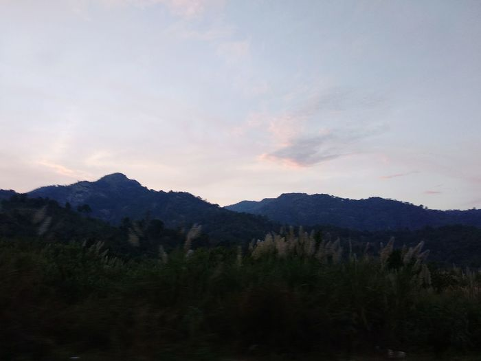 kayin state,myanmar Mountain Forest Landscape Pinaceae Tree Nature No People Sunset Sky Mountain Range Beauty In Nature