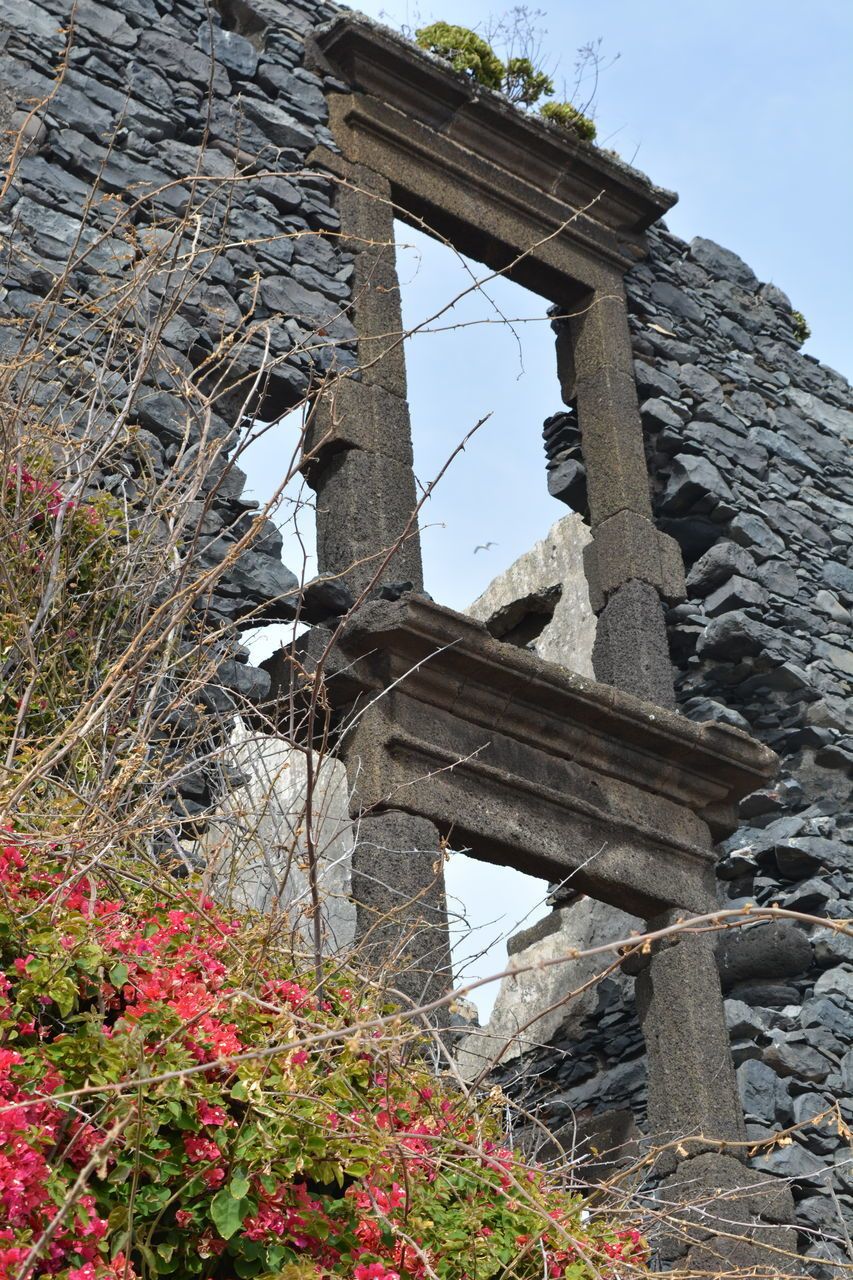 architecture, built structure, building exterior, low angle view, day, nature, old, history, abandoned, plant, the past, no people, building, damaged, sky, outdoors, obsolete, run-down, bad condition, ruined, deterioration, stone wall