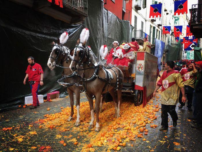 Carnival Crowds And Details Horses Oranges Carnival Party Carnivale Di Ivrea Ivrea