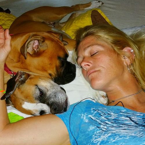 Capture The Moment Enjoy The New Normal Pets Togetherness Happiness Love My Boxers