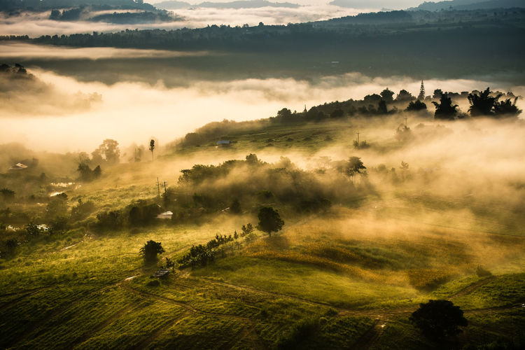 Foggy weather Misty Morning Light Weather Beauty In Nature Day Field Fog Foggy Forest Grass Growth Hazy  Hill Landscape Mist Mountain Nature Outdoors Scenics Sky Tranquility Tree
