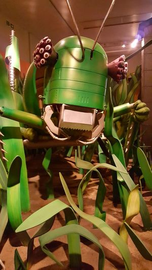 Robot grasshopper. Green Color Animal Themes Indoors  No People Funtimes Ayeshea Bah EyeEm Gallery London Fresh On Eyeem  Robot Zoo Robot Grasshopper Hornimanmuseum Insects Of Eyeem