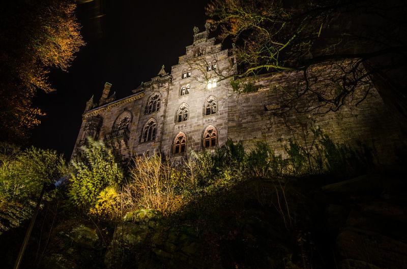 Castle Nightphotography Tree Illuminated Water Sky Close-up