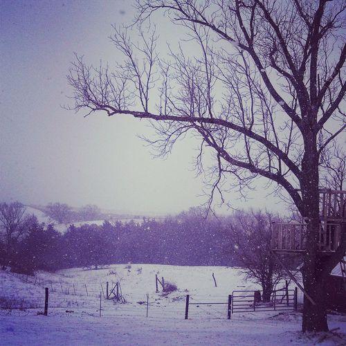 Snowing Feels Like Christmas I Love The Snow