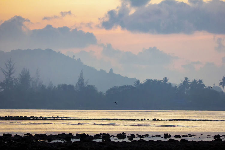 The seaside atmosphere at the early morning. First light before sunrise. mangrove forest. Sky Beauty In Nature Tranquil Scene Scenics - Nature Water Tranquility Tree Cloud - Sky Plant Non-urban Scene Sunset Nature Idyllic Land No People Sea Beach Fog Outdoors