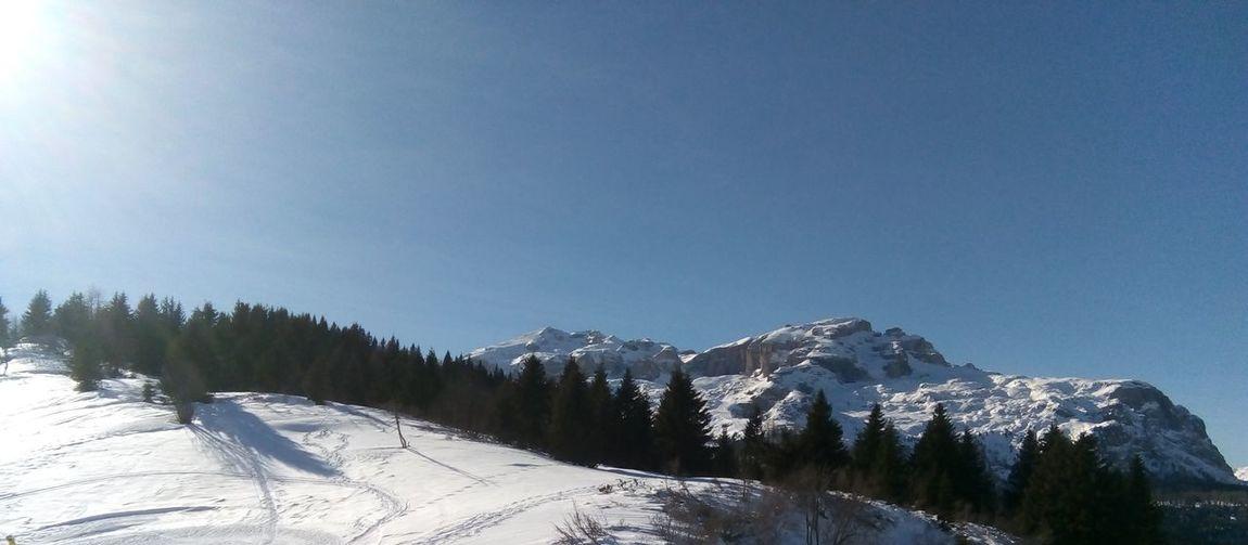 Montagne delle Dolomiti (5) Dolomites, Italy Snow Mountain Cold Temperature Winter Forest Pine Tree Frozen Sky