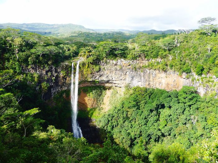 EyeEmNewHere Primordial Peace Scenery Scenics Jungle Crater Chamarel Mauritius Plant Tree Beauty In Nature Green Color Water Growth Nature Scenics - Nature No People Sky Waterfall Environment Land Non-urban Scene Tranquility Forest Tranquil Scene Flowing Water EyeEmNewHere