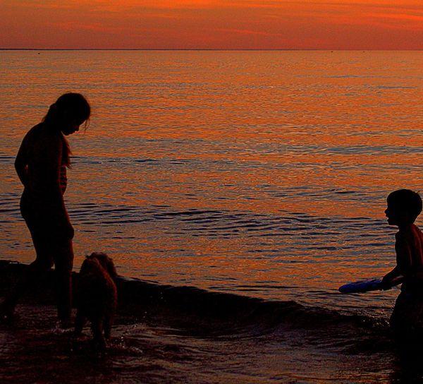 Summer beach play kids and dog Summer Beach Playing Kids And Dog Silloett