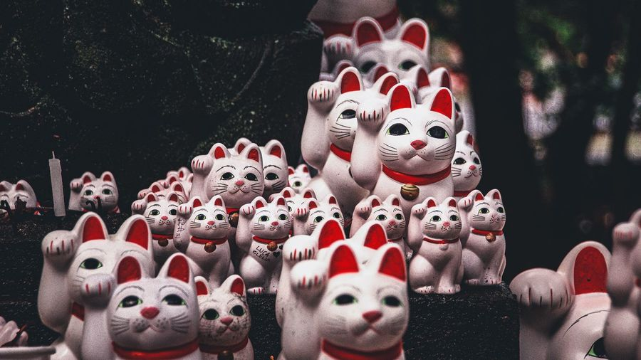Close-up of cat statues