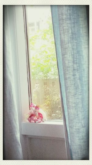 buttercup fairy is staring lonesome out the window hoping her sister will come home soon. or so my little sister just told me. First Eyeem Photo