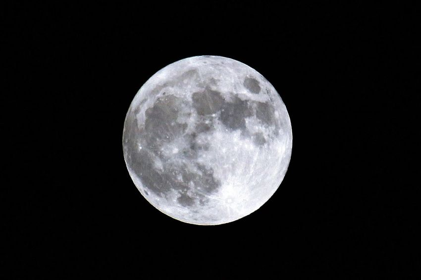 Moon Night Moon Surface Full Moon Astronomy Planetary Moon Nature
