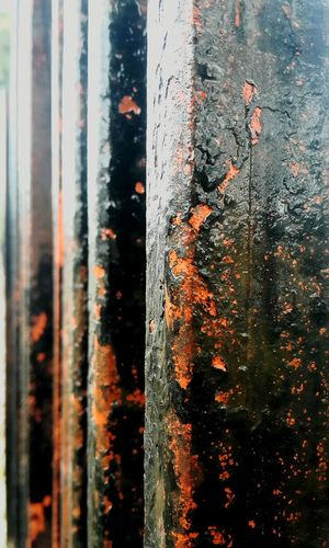 Rust Rust Fire Burning EyeEm Best Shots Flames Scab Texture Corrosive Old Gates