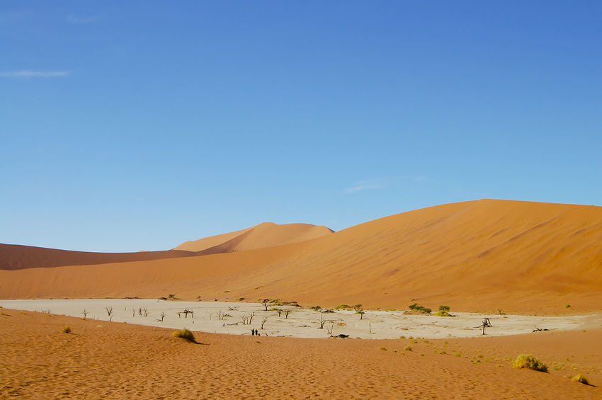 Deadvlei - Namibia Deadvlei Namibia Sossusvlei Arid Climate Desert Namib Nature Sand Sand Dune