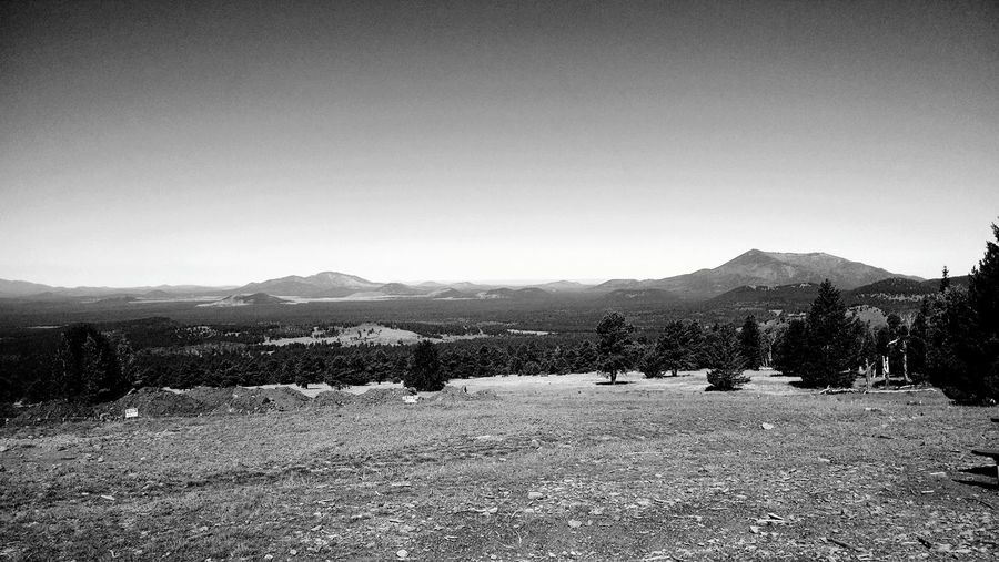 Mountain Field Agriculture Mountain Range Landscape Beauty In Nature No People Nature Outdoors Tree Rural Scene Scenics Sky Day Irrigation Equipment Climb To Conquer Cancer Flagstaff, Az SnowBowl Mountain View View From The Top Climb