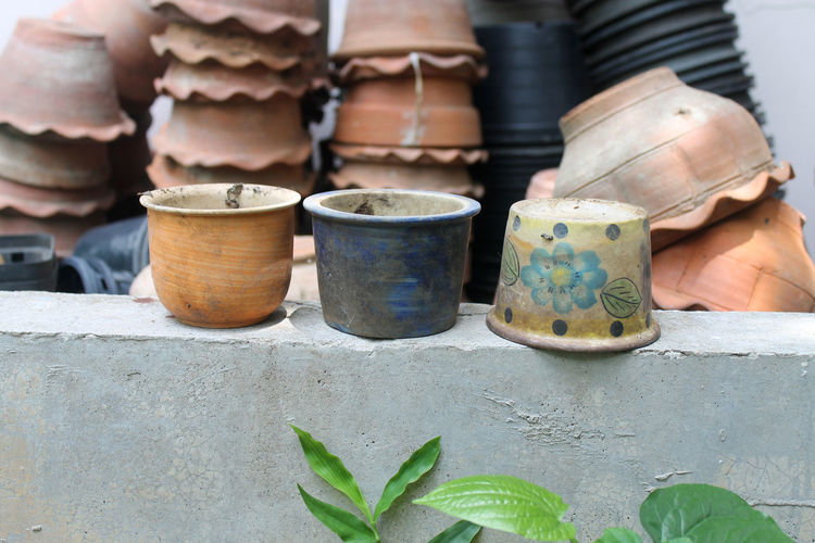 Close-up of flower pots on wall