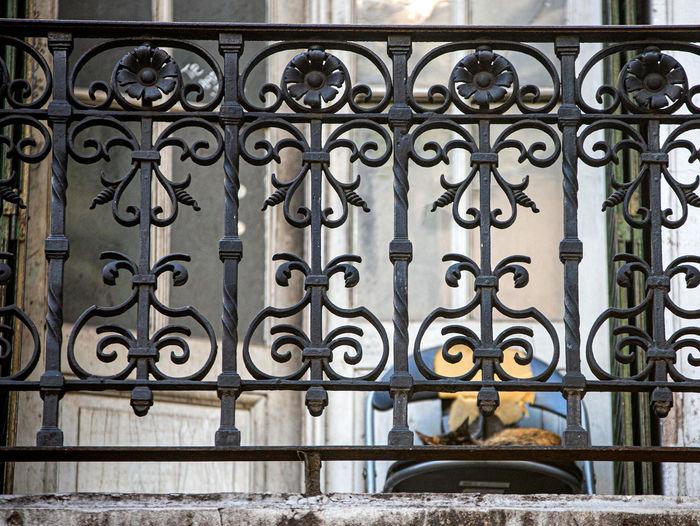 Metal gate of building