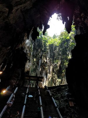 Batu Caves -Malaysia Tree Growth Indoors  Nature Water Day Inside Cave Low Angle View The Secret Spaces