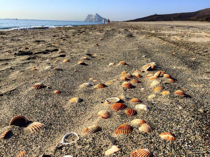 Alcaidesa Beach Beach RockOfGibraltar Water Shore Sand Nature Tourism Travel Destinations Beauty In Nature Coastline Summer Seashell Alcaidesa SPAIN Vacations First Eyeem Photo
