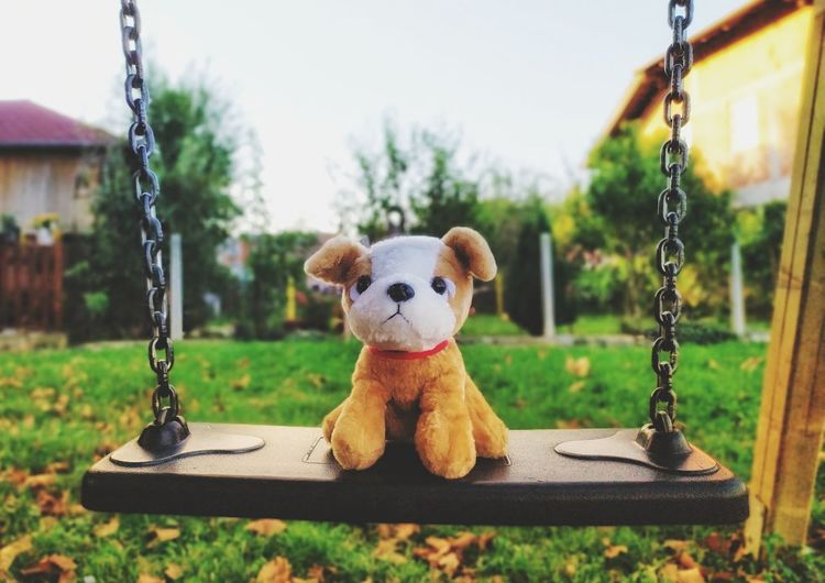 Close-up of toy on swing in park