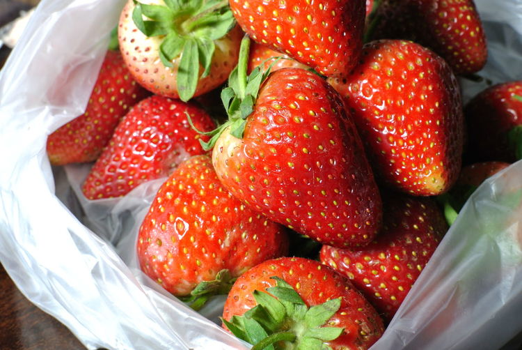 Abundance Bag Berry Fruit Close-up Container Food Food And Drink Freshness Fruit Healthy Eating Indoors  Juicy Large Group Of Objects No People Plastic Red Ripe Still Life Strawberry Temptation Wellbeing