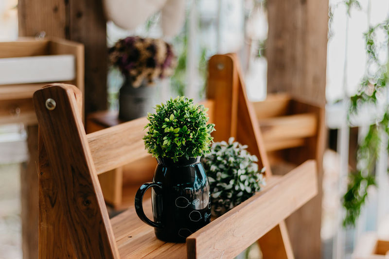 Box Chair Container Day Decoration Flower Flower Pot Flowering Plant Focus On Foreground Freshness Green Color Houseplant Indoors  Nature No People Plant Potted Plant Seat Selective Focus Table Wood - Material