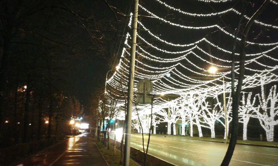 Illuminated Tree The City Lights