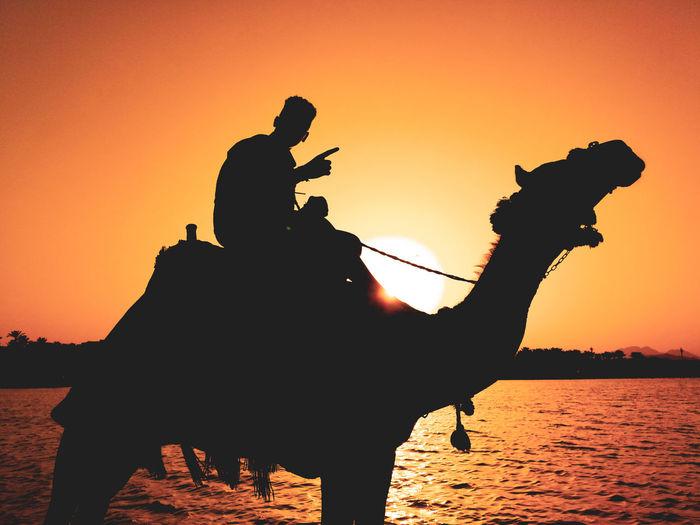 Egipt Sunset