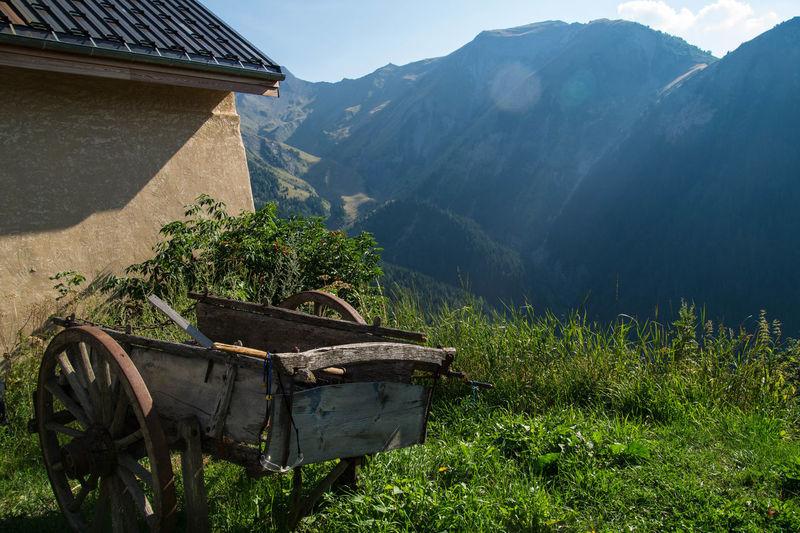 Wheelbarrow in backyard against mountain range
