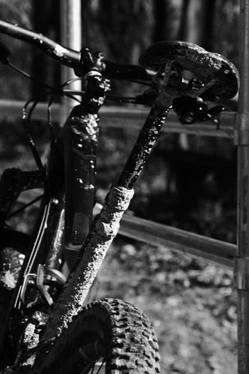 Moutainbike