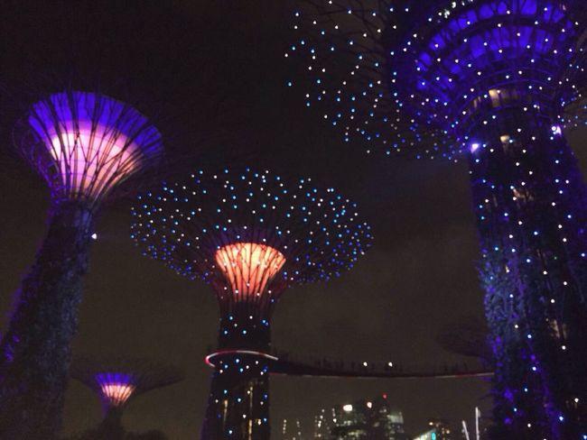 Gardenbythebay, Singapore