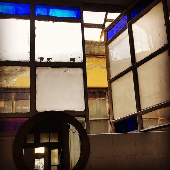 Window Glass -