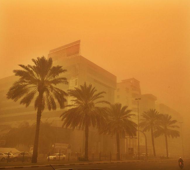Dubai Sandstorm Desert Poor Visibility The Great Outdoors - 2016 EyeEm Awards