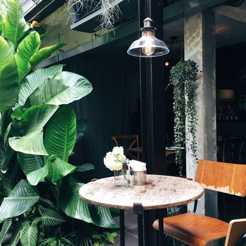 Chair And Table By Potted Plants At Sidewalk Cafe