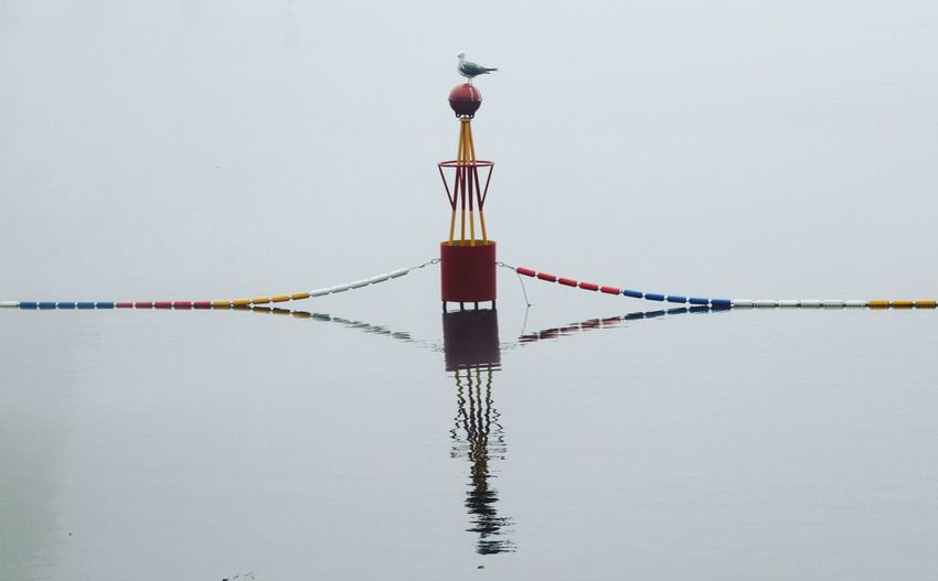 Seagull Perching On Buoy Amidst Sea