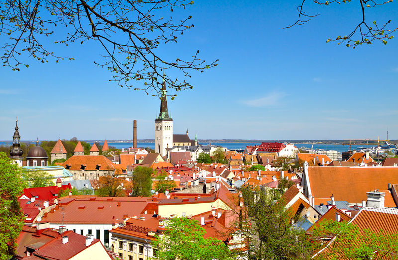 View to the old town of Tallinn, Estonia. Beautiful cityscape with red rooftops and few churches. View Tallinn Tallinn Old Town Historical Building History Summer Travel City Cityscape Sea Tree Place Of Worship Sky Architecture Building Exterior Horizon Over Water TOWNSCAPE Town Tiled Roof  Old Town Place Bell Tower Residential Structure Roof Tile Rooftop Roof Urban Skyline Shore Bell Tower - Tower Fort