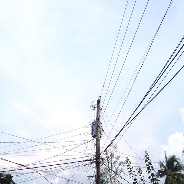 Connection Power Line  Electricity  Electricity Pylon Cable Power Supply Low Angle View Technology Fuel And Power Generation Tree Electricity Tower Power Cable Day High Section Sky Outdoors Blue Telephone Line Nature Telephone Pole